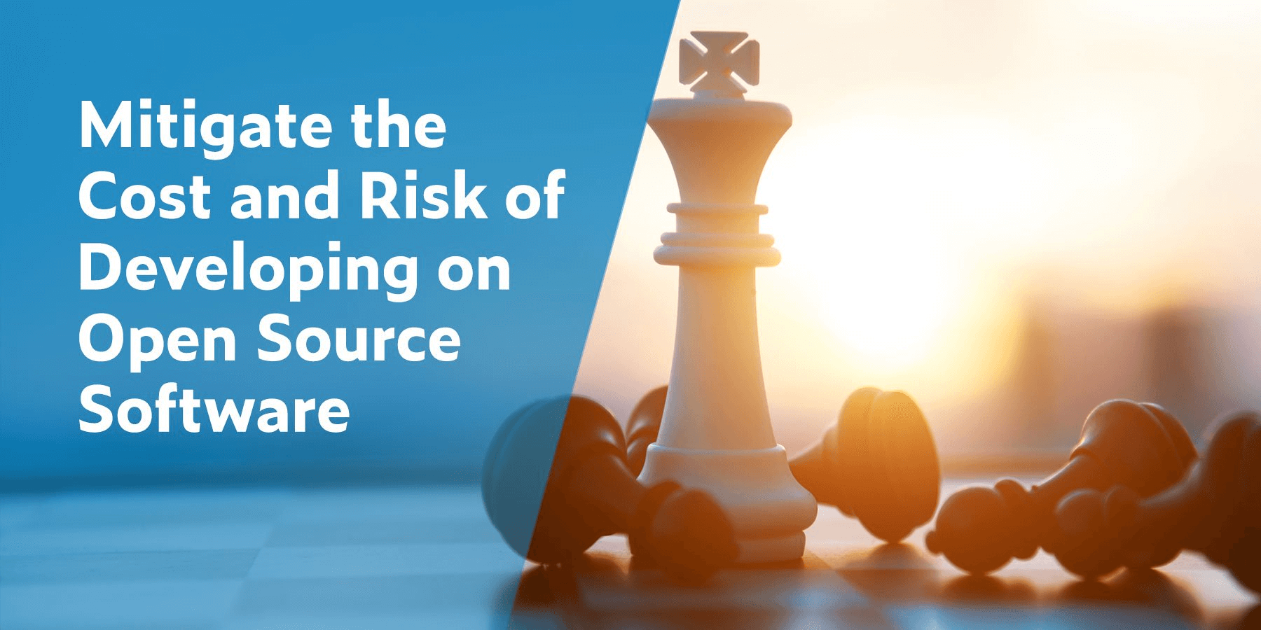 Mitigate the Cost and Risk of Developing on Open Source Software